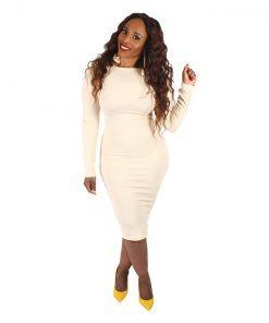 Pencil Dress Beige